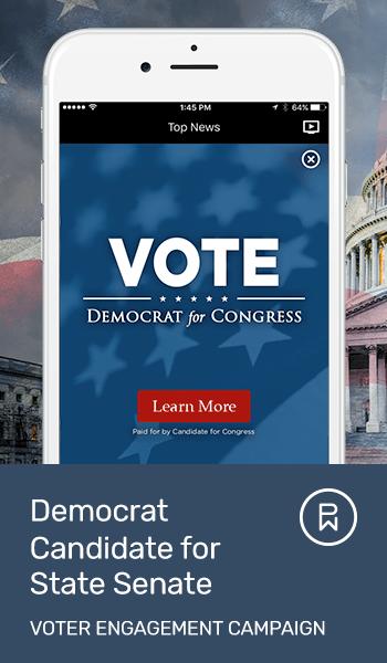 LP-Email-Democrat-Campaign-Snapshot